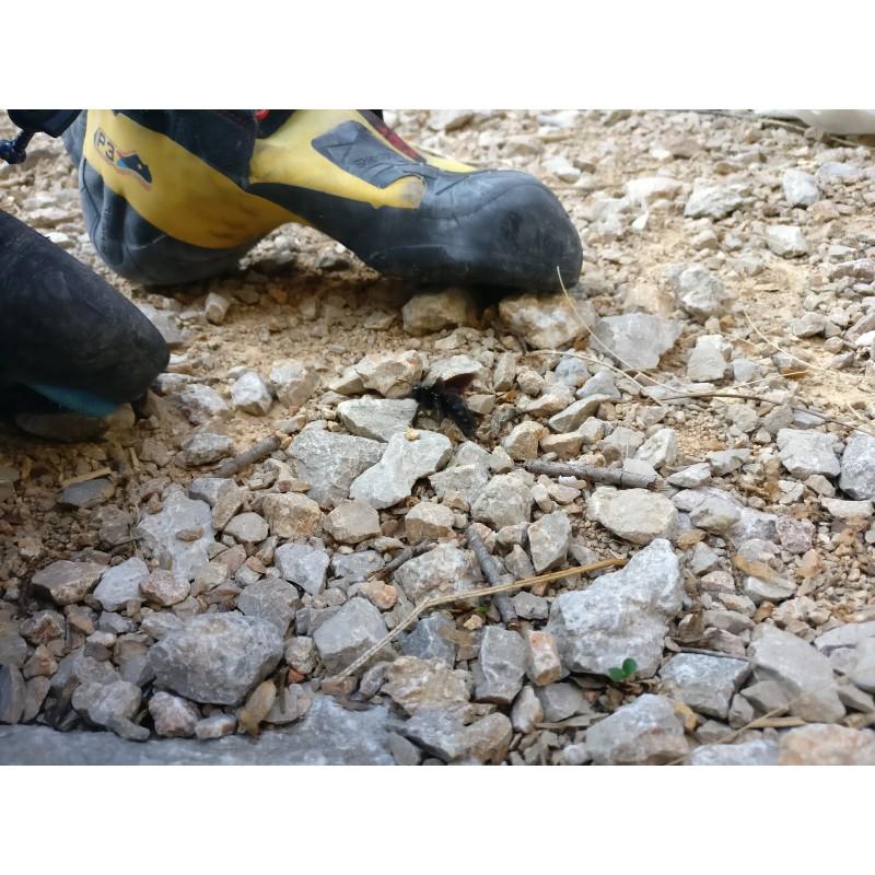 Image 1 de Patrick à La Sportiva - Skwama - Chaussons d'escalade