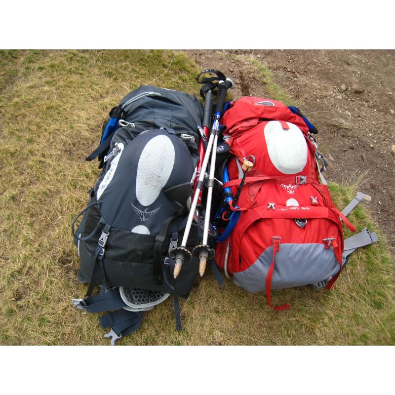 Image 1 de Elke à Osprey - Ariel 65