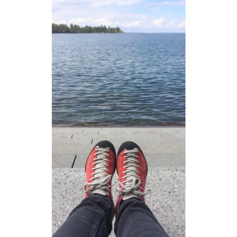 Image 1 de Tanja à Scarpa - Mojito - Chaussures de randonnée