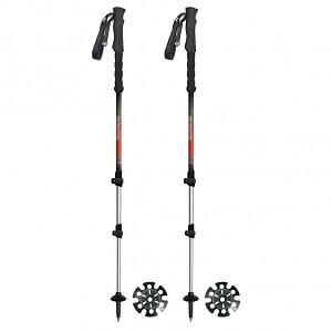 Bâtons de randonnée à ski