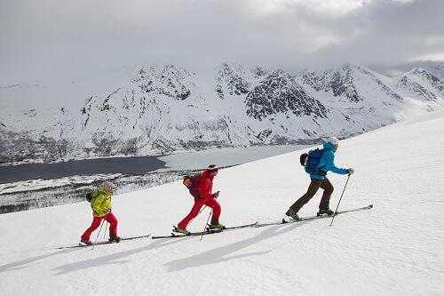 Bâtons pour ski de randonnée
